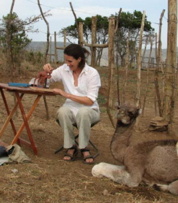 Sculpting baby camel Bibianna in Kenya